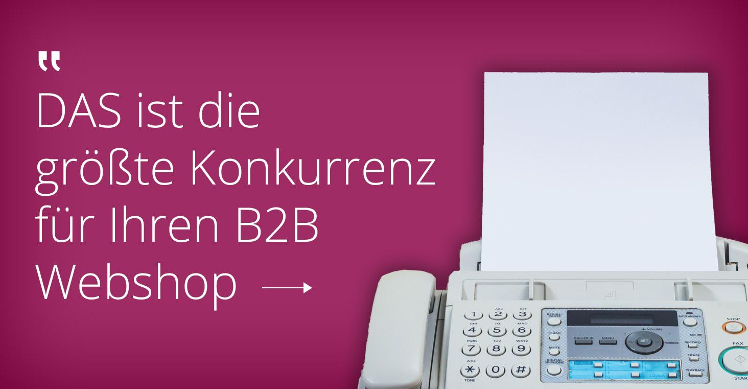 B2B online shop sieht wie B2C aus
