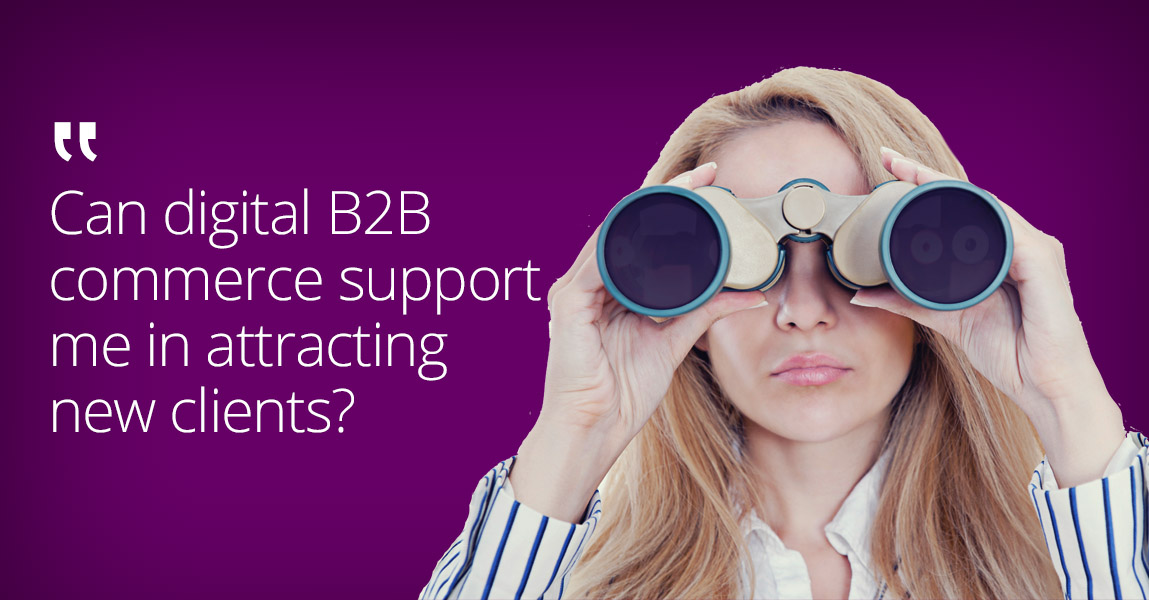 What potentials lie in digital B2B commerce?