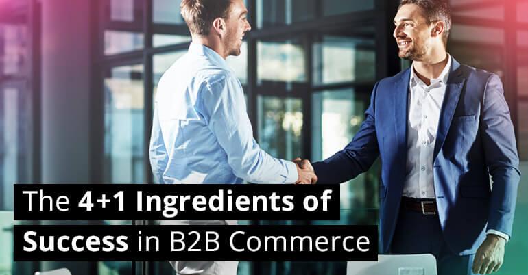 success-b2b-commerce-1